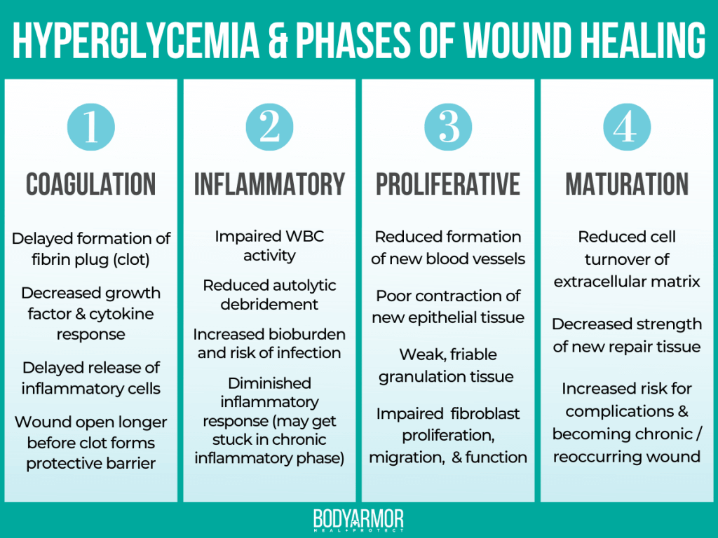 Hyperglycemia Phases of Wound Healing Infographic